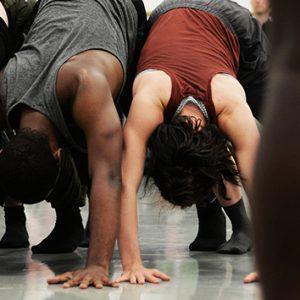 A sharing of dance work at Phoenix Dance Theatre's CC Labs 2019. Five dancers are shoulder to shoulder in downward facing dog pose on the left of the photo as we look at it. We can see the back of the legs of another dancer in the foreground to the right of the photo.
