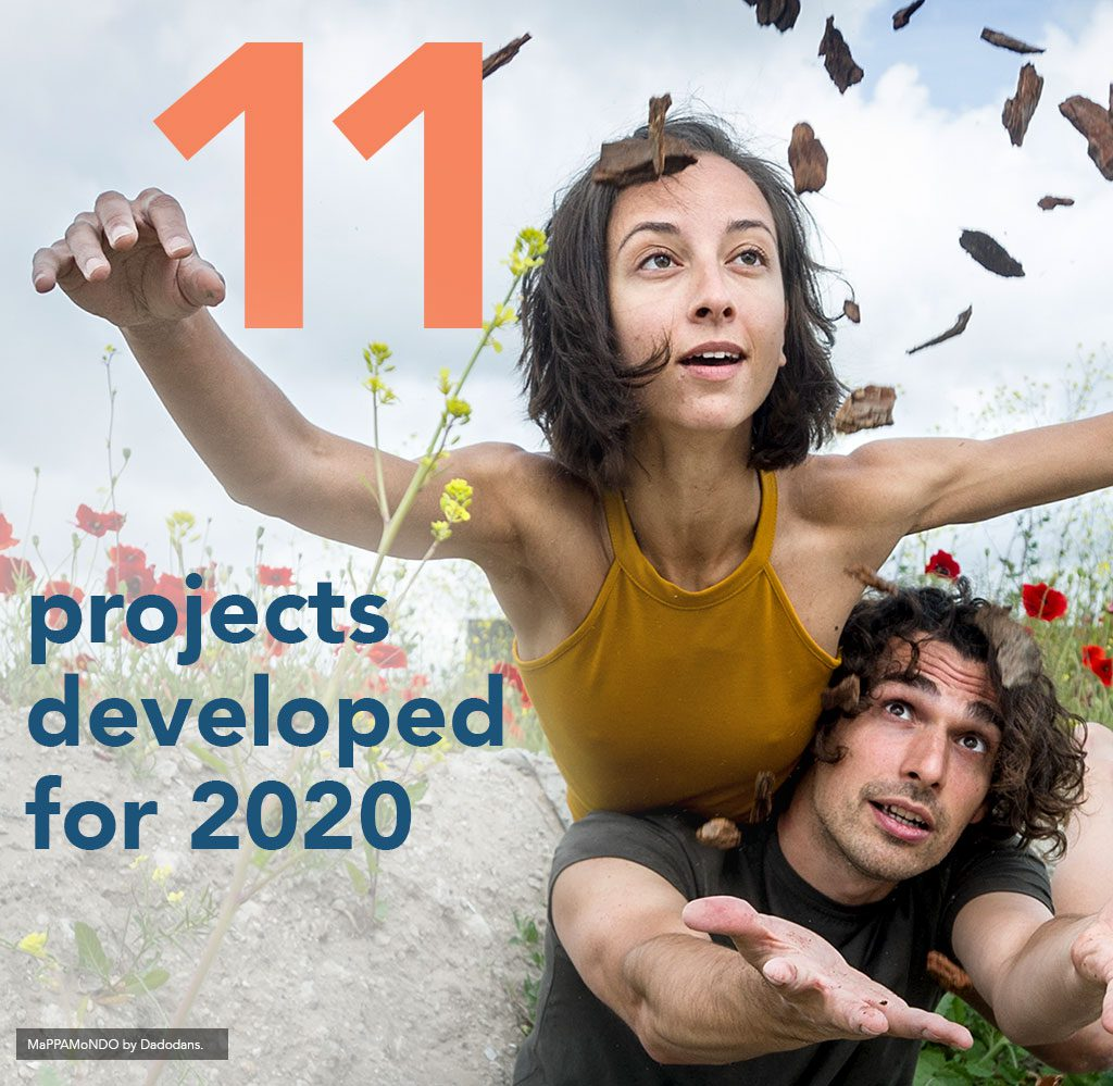 11 projects developed for 2020